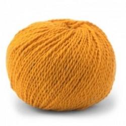 Pascuali Tibetan 118 Kumquat