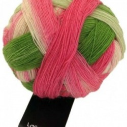 Schoppel Lace Ball 2079 durch die Blume